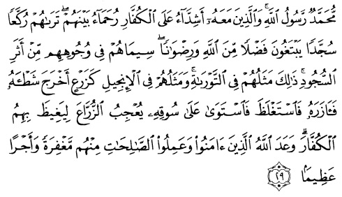 tulisan arab alquran surat al fath ayat 29
