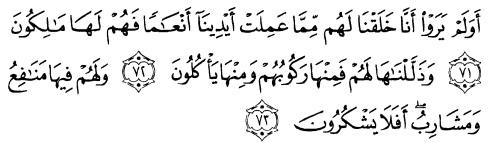 tulisan arab alquran surat yaasiin ayat  71-73