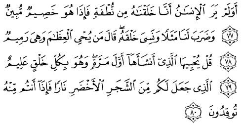 tulisan arab alquran surat yaasiin ayat  77-80