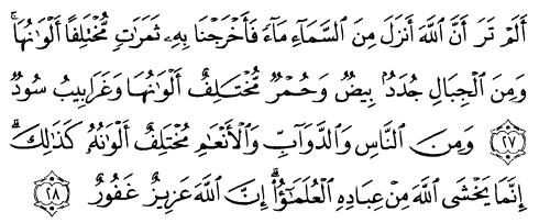 tulisan arab alquran surat fathir ayat 27-28