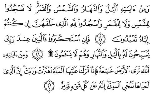 tulisan arab alquran surat fushilat ayat 37-39