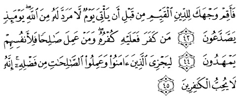 tulisan arab alquran surat ar ruum ayat 43-45