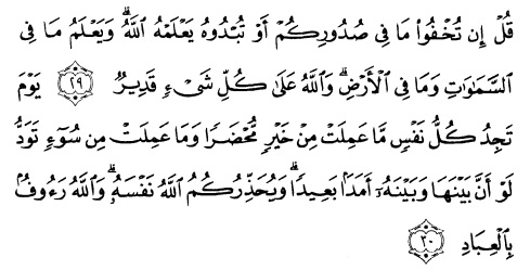 tulisan arab alquran surat ali imraan ayat 29-30
