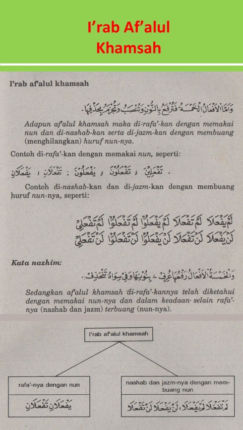 belajar bahasa arab ilmu nahwu i'rab af'alul khamsah