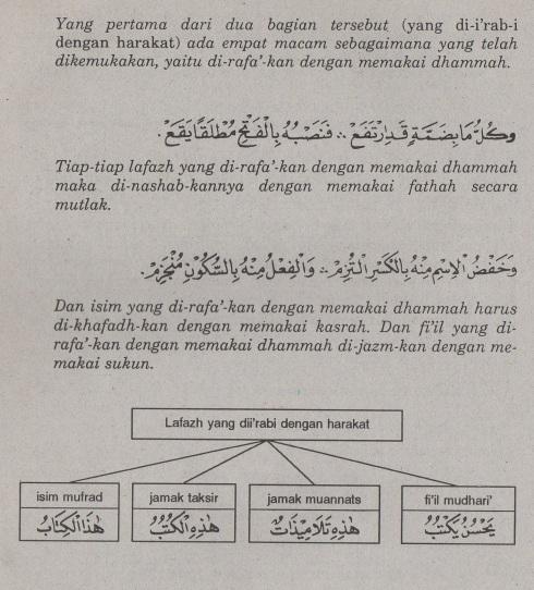 belajar bahasa arab ilmu nahwu i'rab dengan harakat.2