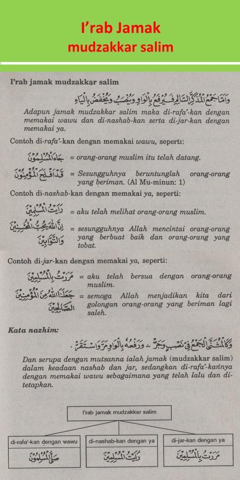 belajar bahasa arab ilmu nahwu i'rab jamak mudzakkar salim