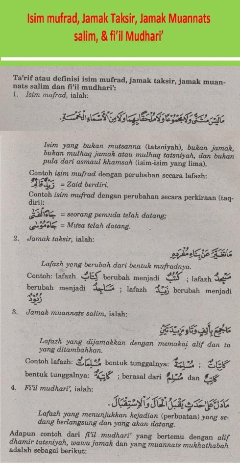 belajar bahasa arab ilmu nahwu isim mufrad, jamak taksir, jamak muannats salim dan fiil mudhari'