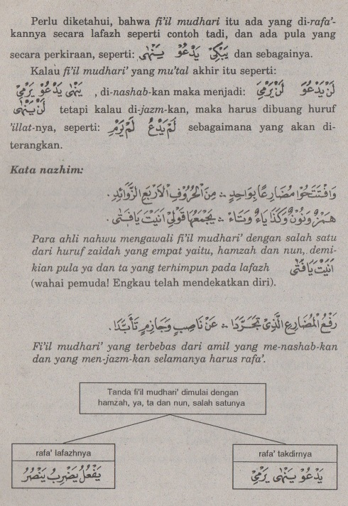 belajar bahasa arab ilmu nahwu tanda fi'il mudhari'2