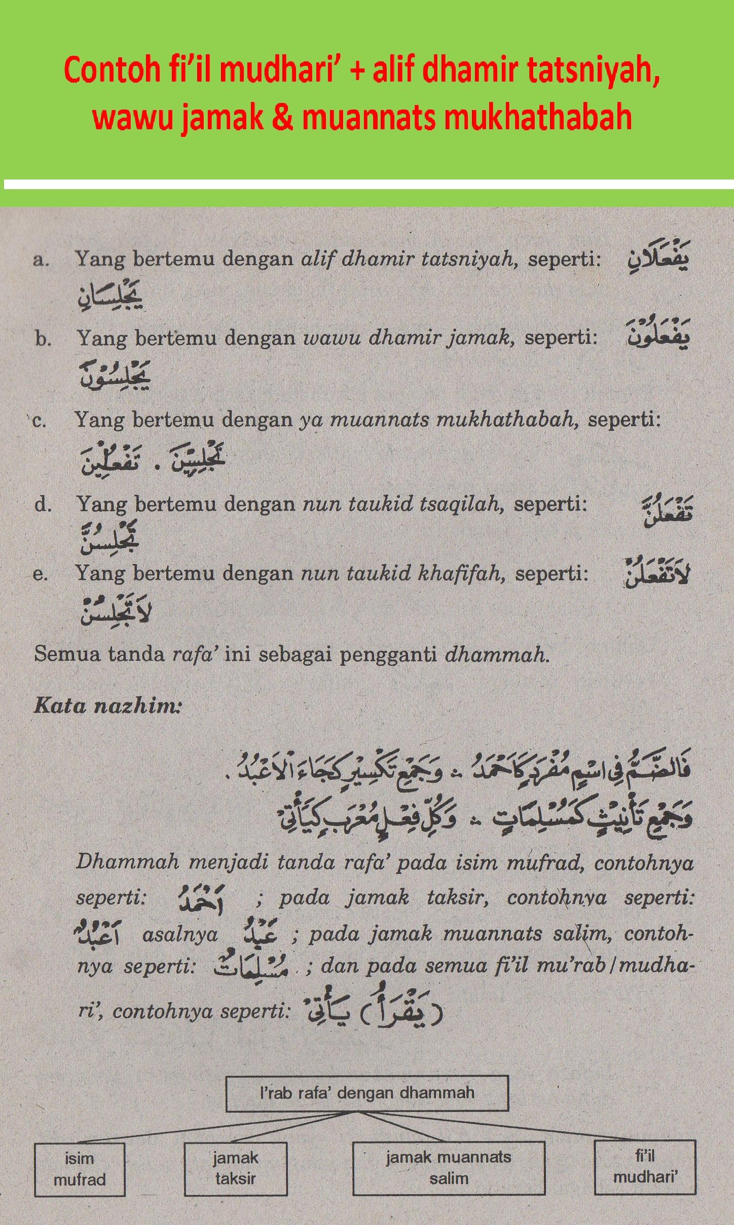 belajar bahasa arab nahu shorof contoh fiil mudhari alif dhamir tatsniyah wawu jamak