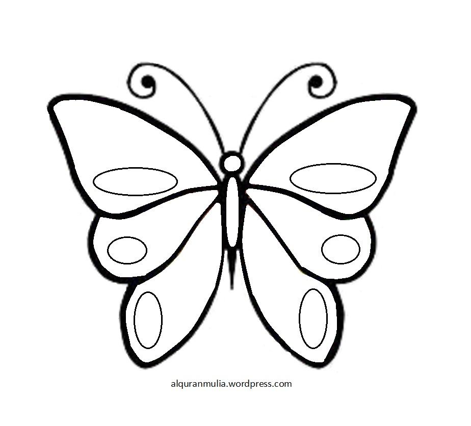 Unduh 95+ Gambar-gambar Kupu-kupu Paling Bagus Gratis