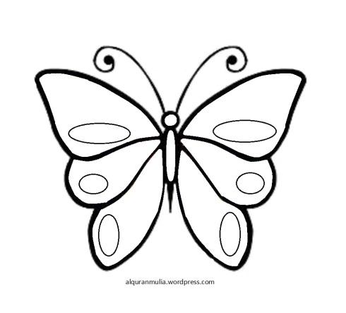 Mewarnai gambar Kupu kupu anak muslim.jpg2