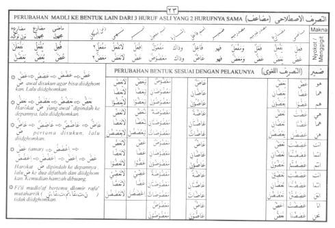 Tasrif kata 'adl-dlaa (menggigit)