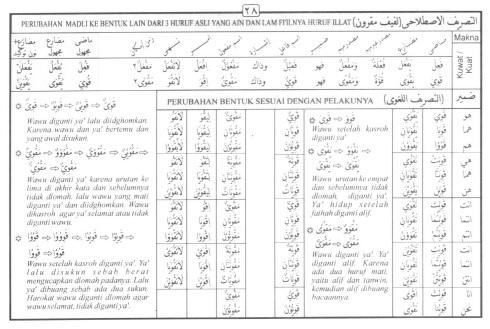 Tasrif kata qawiya (kuat)