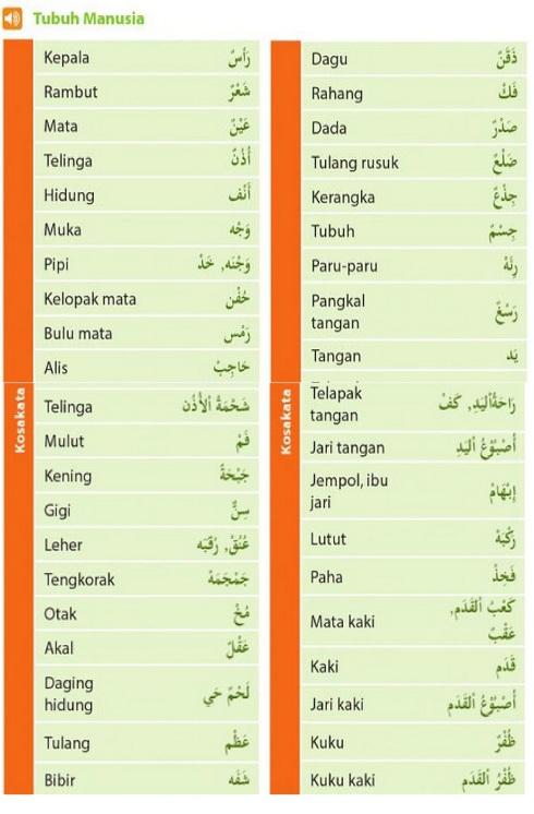 nama-nama bagian tubuh manusia dalam bahasa arab