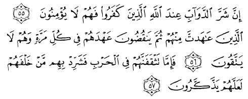 tulisan arab alquran surat al anfaal ayat 55-57