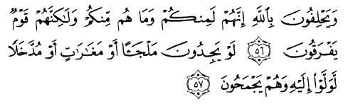 tulisan arab alquran surat at taubah ayat 56-57