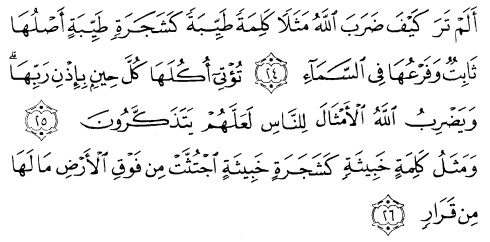 tulisan arab alquran surat ibrahim ayat 24-26