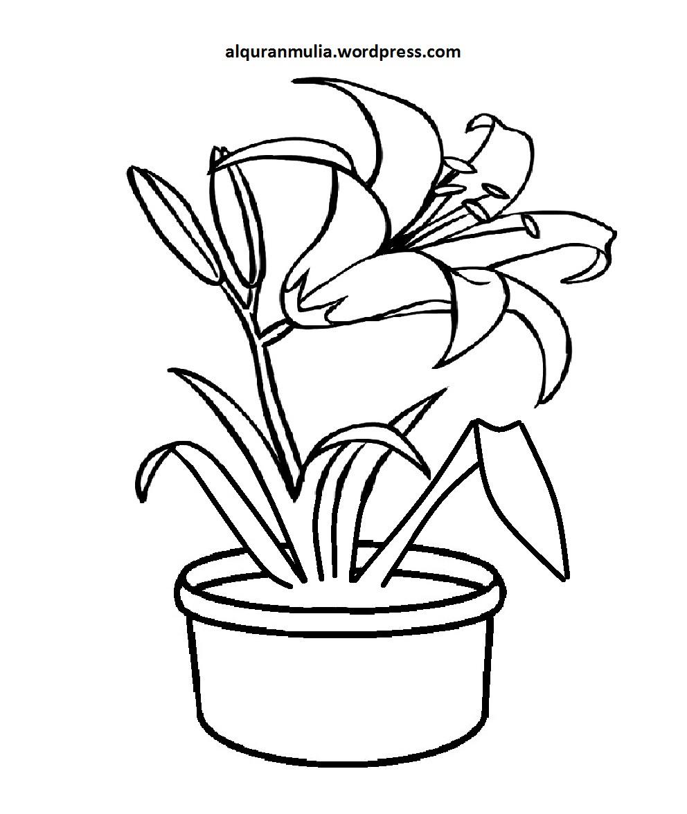 Permalink to 21 Gambar Mewarnai Bunga