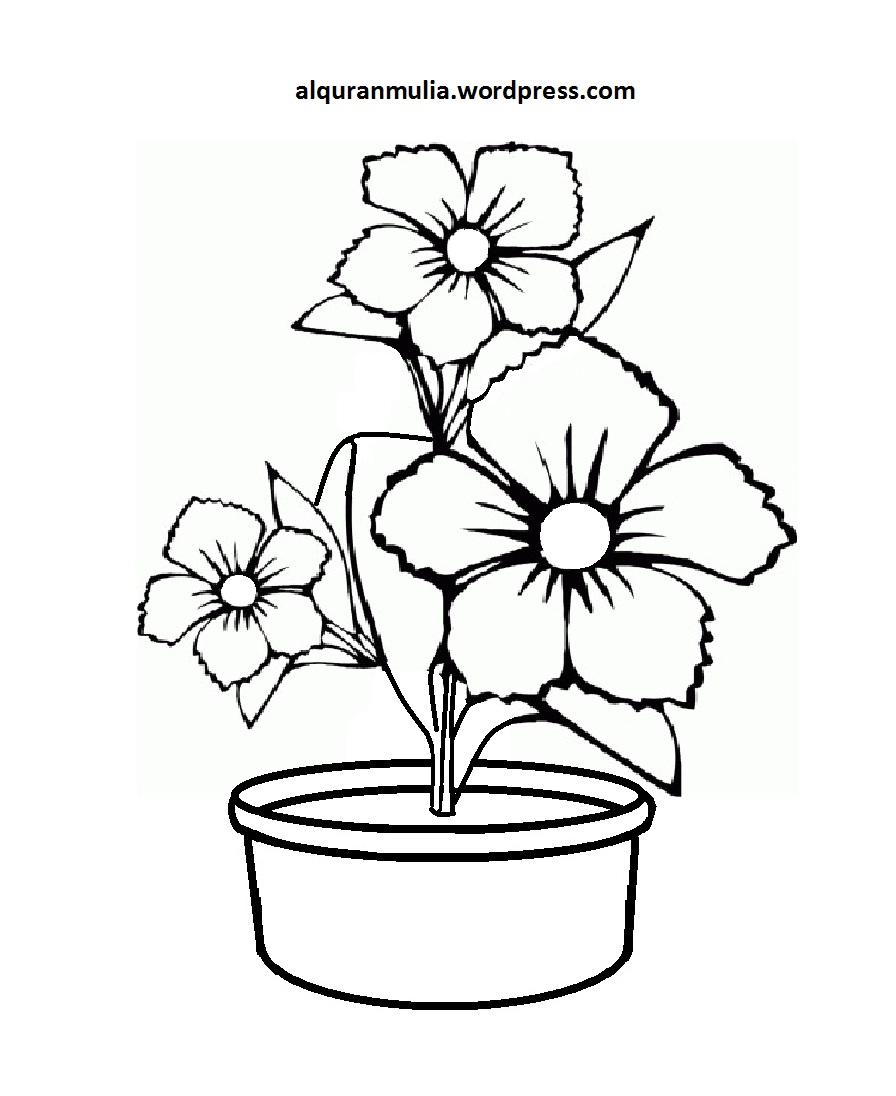 Mewarnai Gambar Bunga Anak Muslim 4 Alquranmulia